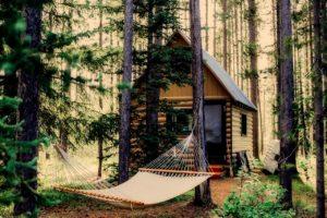 shack, hut, log cabin